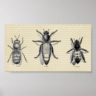 Vintage Bienen-Kunst Poster