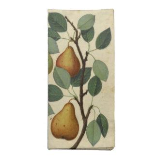 Vintage Birnen-botanische Frucht-Illustration Serviette