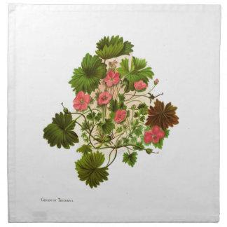 Vintage Blumen der Wissenschafts-NZ - Pelargonie Stoffserviette