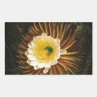 Vintage Blumen-Nacht-Blühender Säulenkaktus Rechteckiger Aufkleber