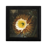 Vintage Blumen-Nacht-Blühender Säulenkaktus Thornt Schmuckschachteln
