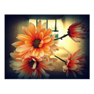 Vintage Blumen-Postkarte Postkarte