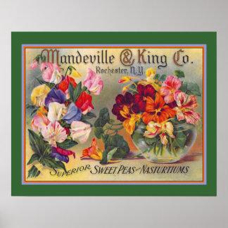 Vintage Blumen-Samen-Anzeige Poster