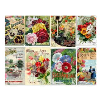 Vintage Blumen-Samen-Katalog-Collage Postkarte