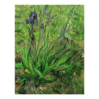 Vintage Blumeniris durch Vincent van Gogh Flyer