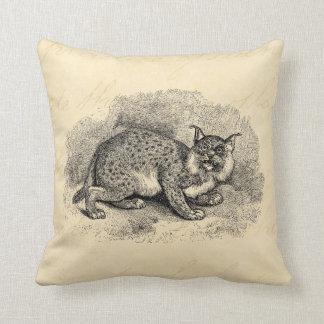 Vintage Bobcat 1800s Bob-Katzen-Luchs-Illustration Kissen