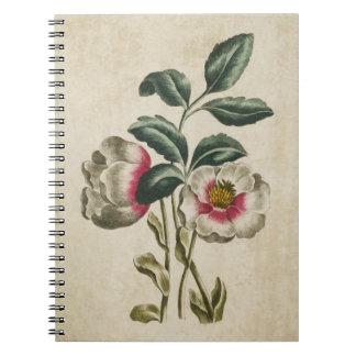 Vintage botanische Blumenhellebore-Illustration Notizblock