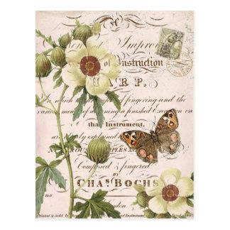 Vintage botanische mit Blumenpostkarte Postkarten