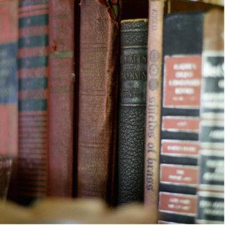 Vintage Bücher alle in einer Reihe Fotoskulptur Magnet