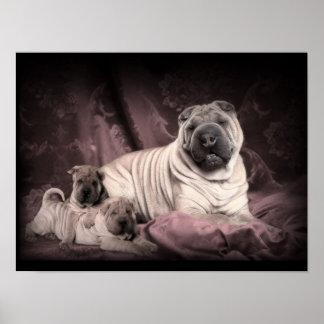 Vintage Chinese Shar Pei Falten, Welpen-Hunde Plakate