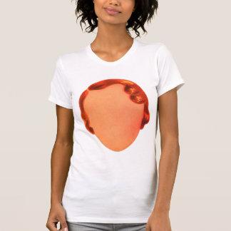 Vintage das Gesichts-Eintagsfliegen der T-Shirt