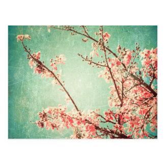Vintage elegante getragene aquamarine Holz- u. Postkarte
