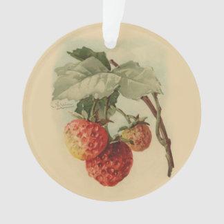 Vintage Erdbeeren