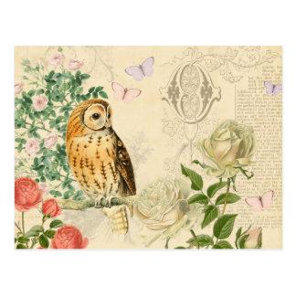 Vintage Eulenmit blumenpostkarte mit schönen Rosen Postkarte