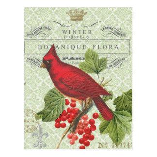 Vintage Feiertag-Winter Rot Kardinalpostkarte Postkarte