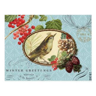 Vintage Feiertag-Winter Vogel-Postkarte