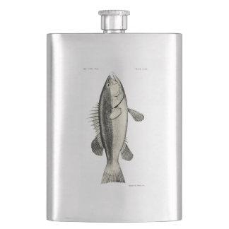 Vintage Fische der Wissenschafts-NZ - Hapuku Flachmann