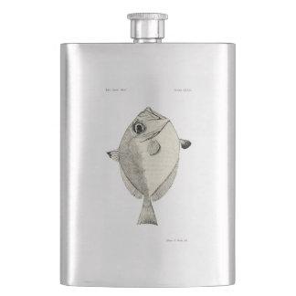 Vintage Fische der Wissenschafts-NZ - silbernes Flachmann
