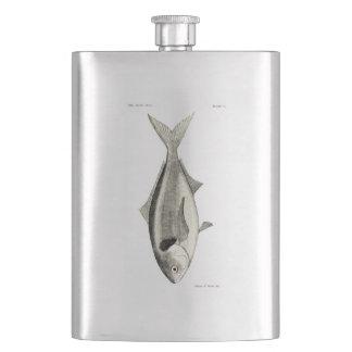 Vintage Fische der Wissenschafts-NZ - Warehou Flachmann