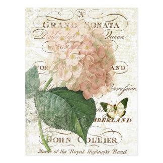 Vintage französische botanische Hydrangeapostkarte Postkarte