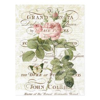 Vintage französische botanische Rosenpostkarte Postkarten