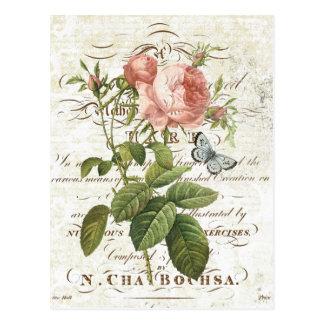 Vintage französische botanische Rosenpostkarte Postkarte
