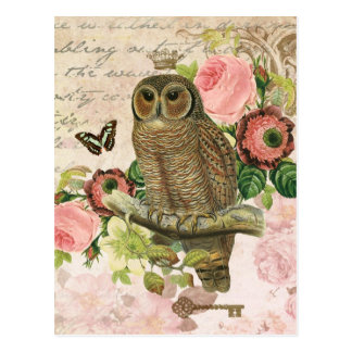 Vintage französische Shabby Chiceulenpostkarte Postkarte