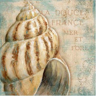Vintage französische Tritonshorn-Muschel Fotoskulptur Magnet