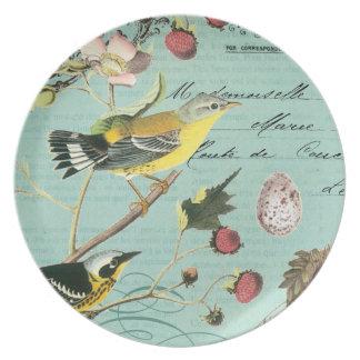 Vintage französische Vogelplatte Teller