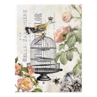Vintage französische Vogelpostkarte