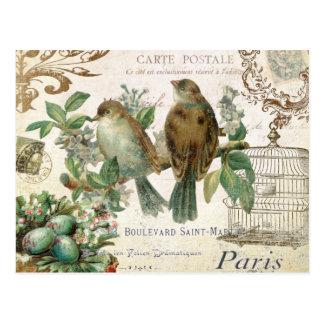 Vintage französische Vogelpostkarte Postkarten