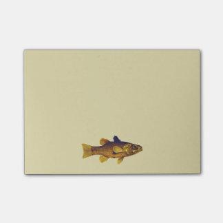 Vintage Frischwasserfische Ilustration Post-it Klebezettel