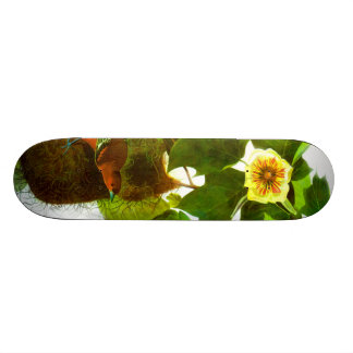 Vintage Frühlings-Tagesvögel u. -Blumen 18,4 Cm Mini Skateboard Deck
