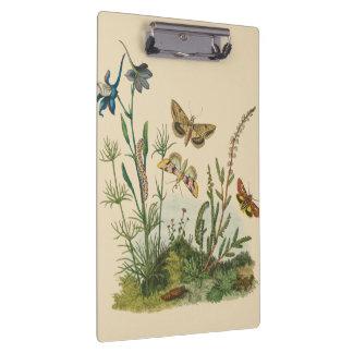 Vintage Garten-Insekten, Schmetterlinge, Raupen Klemmbrett