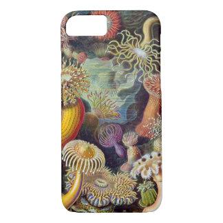 Vintage Haeckel Seeanemone iPhone 8/7 Hülle