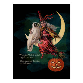 Vintage Halloween-Eule und Hexe-Postkarte Postkarte