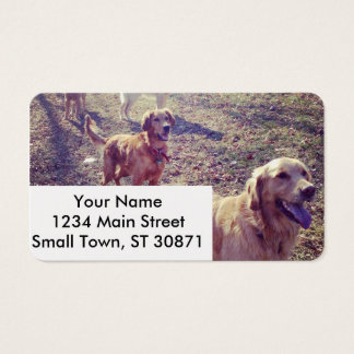 Vintage Hunde des goldenen Retrievers ausgerichtet Visitenkarte
