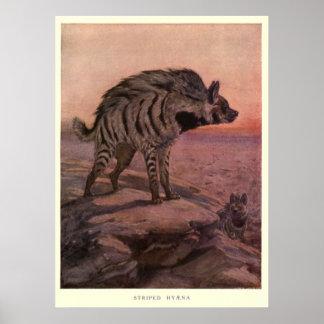 Vintage Hyäne Painting (1909) Poster