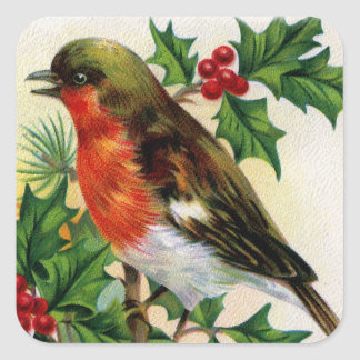Vintage Illustration Weihnachtsrobins Quadratischer Aufkleber