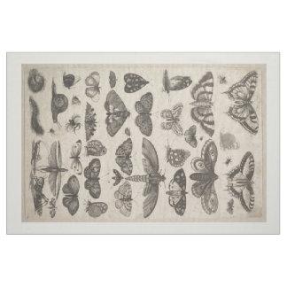 Vintage Insekten-Entomologielepidoptera-Tapisserie Stoff