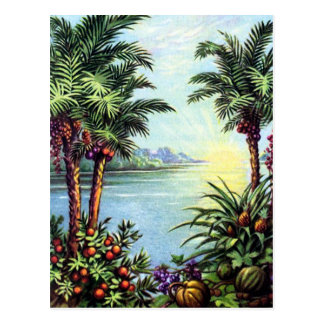 Vintage Insel Postkarte