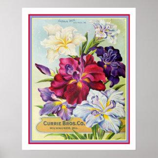 Vintage japanische Iris-Samen-Anzeige 16x20 Poster