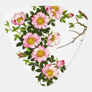 Vintage japanische Kirschblüten, -ROSA und -gold Plektron