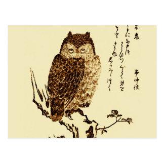 Vintage japanische Tinten-Skizze einer Eule Postkarte