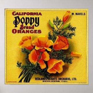 Vintage Kalifornien-Mohnblumen-Orangen Poster