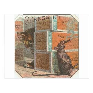 Vintage Katze, die rauchende Ratte betrachtet Postkarte