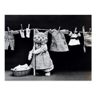 Vintage Katzen-hängende Stoffe heraus zum zu Postkarte