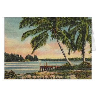 Vintage Kokosnusspalmen Karte