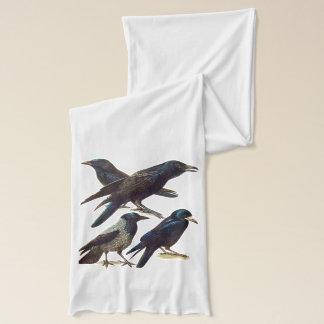 Vintage Krähen-und Raben-Collage, schwarze Vögel Schal