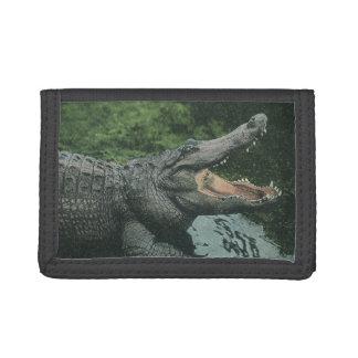 Vintage Krokodil-Reptilien, Marinetierleben
